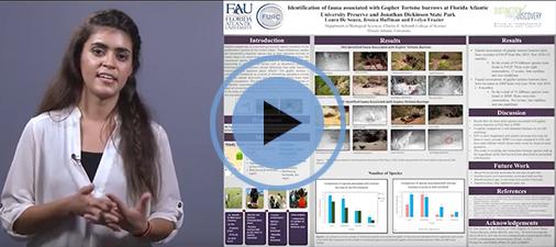 Laura De Souza - Summer Undergraduate Research Fellowship